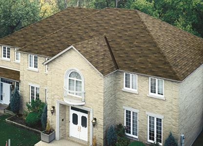 Hs Trad DBrwn Roofing Design